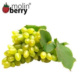 Molin Berry - Queen Grapes-  Aroma